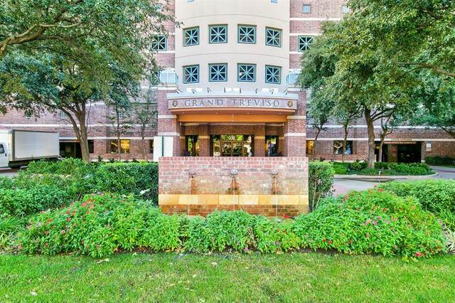330 Las Colinas Boulevard E #224, Irving, TX 75039 (MLS #14330002) :: Results Property Group