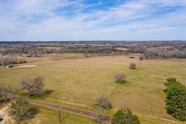 TBD County Road 43, Tyler, TX 75704 (MLS #14330658) :: The Heyl Group at Keller Williams