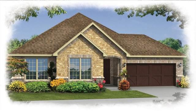 901 Mallard Avenue, Denton, TX 76210 (MLS #14331156) :: Real Estate By Design