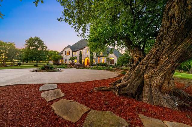 12113 County Road 290, Anna, TX 75409 (MLS #14332077) :: The Hornburg Real Estate Group