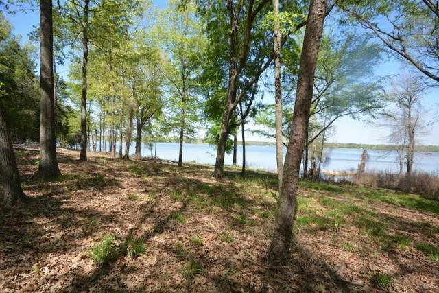 1 Sterling Shores, Scroggins, TX 75480 (MLS #14332235) :: Premier Properties Group of Keller Williams Realty