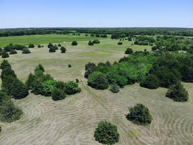 TBD Reynolds Road, Whitewright, TX 75491 (MLS #14333832) :: The Kimberly Davis Group