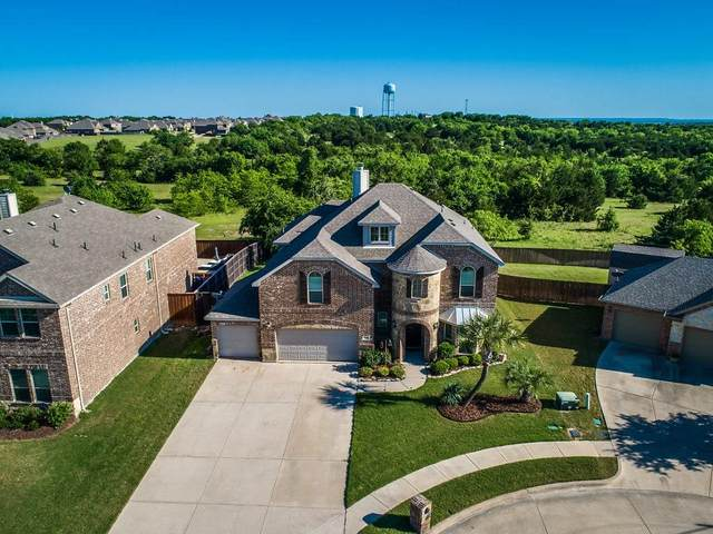 1310 Lucetta Court, Midlothian, TX 76065 (MLS #14336798) :: Hargrove Realty Group