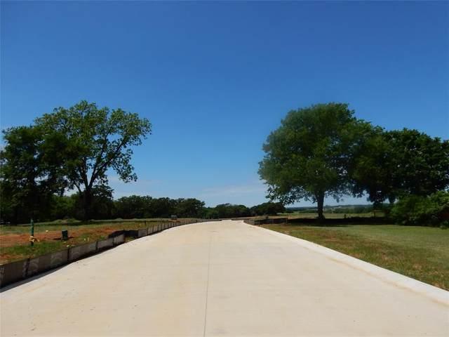 119 Lakeview Circle, Pilot Point, TX 76258 (MLS #14337997) :: The Kimberly Davis Group