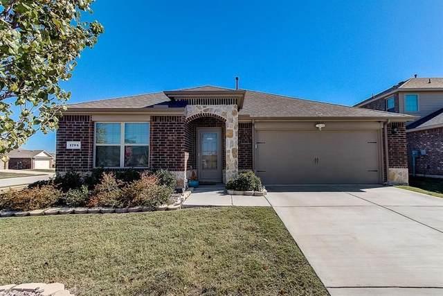1704 Wild Rye Circle, Princeton, TX 75407 (MLS #14338244) :: Real Estate By Design