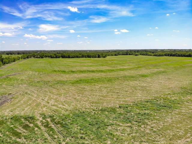 Lot 7 Cr 1092, Celeste, TX 75423 (MLS #14340118) :: The Kimberly Davis Group