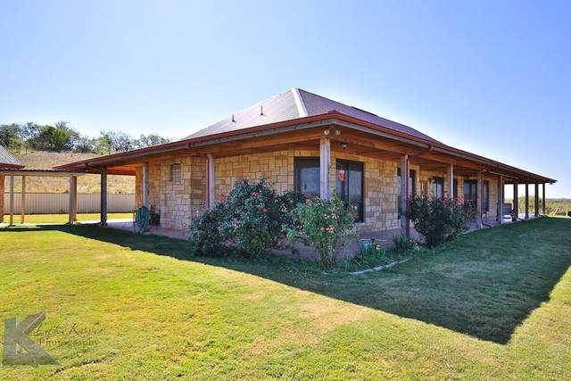 1581 County Road 134, Ovalo, TX 79541 (MLS #14341545) :: The Good Home Team