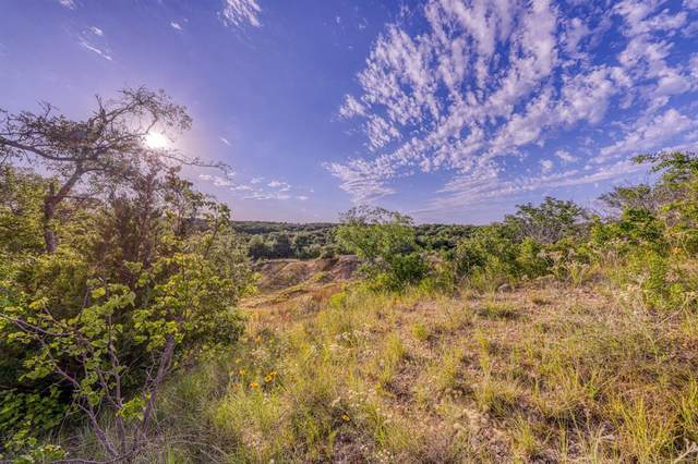 TBD-4 Sweet Springs Road, Weatherford, TX 76088 (MLS #14342381) :: The Good Home Team