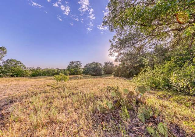 TBD-21 Sweet Springs Road, Weatherford, TX 76088 (MLS #14342406) :: The Good Home Team