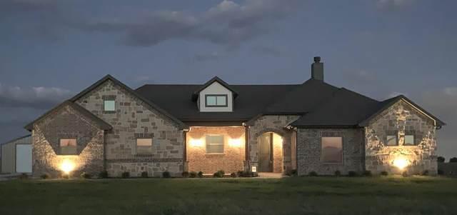7237 Michelle Pointe, Krum, TX 76249 (MLS #14344418) :: The Heyl Group at Keller Williams
