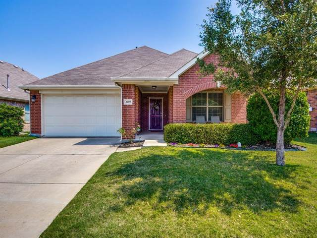 2209 Willow Creek Drive, Little Elm, TX 75068 (MLS #14345880) :: RE/MAX Pinnacle Group REALTORS