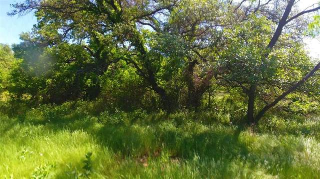19224 Hwy 6, Gorman, TX 76454 (MLS #14345933) :: The Kimberly Davis Group