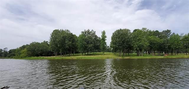 34 Waters Edge Lane, Scroggins, TX 75480 (MLS #14346236) :: Tenesha Lusk Realty Group