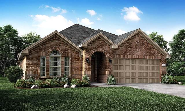 9224 Lace Cactus Drive, Fort Worth, TX 76131 (MLS #14346765) :: The Heyl Group at Keller Williams