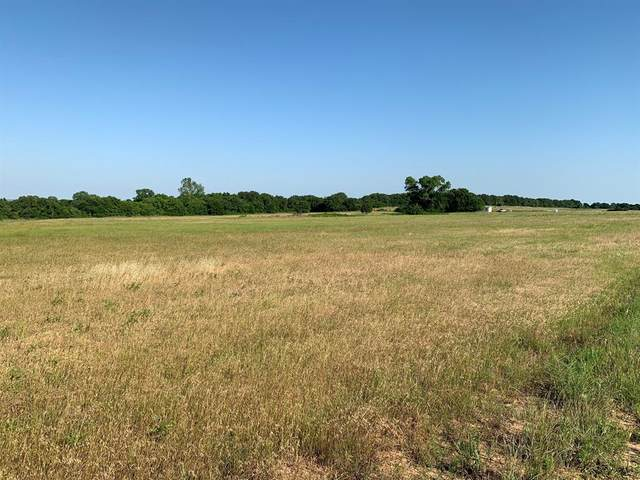 1379 County Road 1480, Chico, TX 76431 (MLS #14347292) :: All Cities USA Realty