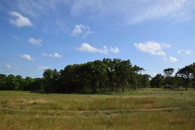 TBD Younger Ranch Road, Azle, TX 76020 (MLS #14347805) :: Hargrove Realty Group