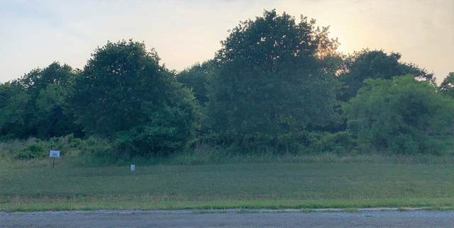763 S Sugartree Drive, Lipan, TX 76462 (MLS #14348103) :: RE/MAX Landmark