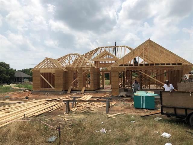 121 Noelle Road, Whitney, TX 76692 (MLS #14348413) :: Ann Carr Real Estate