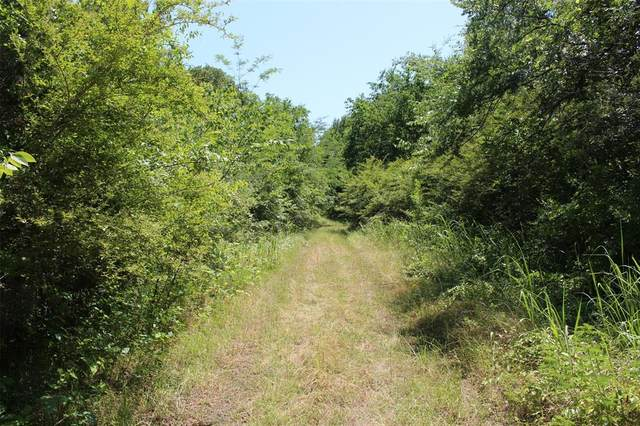 Mohawk -Dirt Drive, East Tawakoni, TX 75472 (MLS #14348471) :: Potts Realty Group