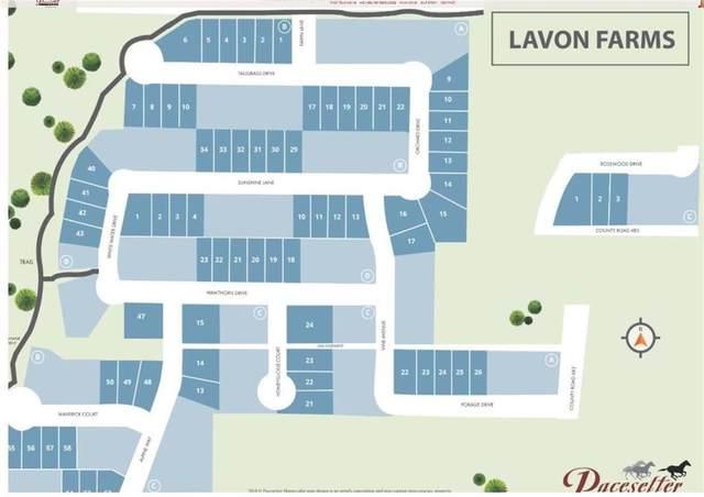 546 Orchard Drive, Lavon, TX 75166 (MLS #14348894) :: Ann Carr Real Estate