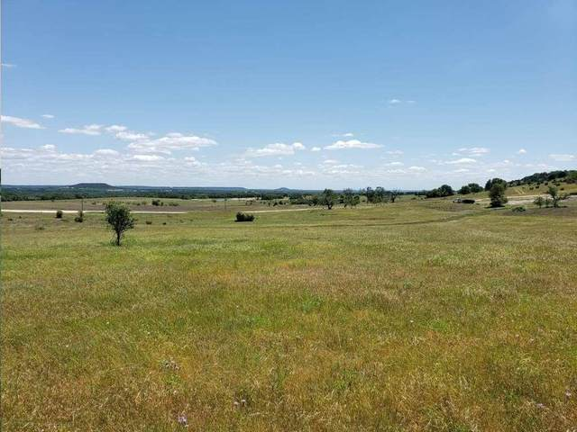 Lot 48 Cottonwood Mesa Drive, Lampasas, TX 76550 (MLS #14349055) :: The Hornburg Real Estate Group