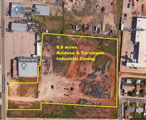 TBD Ruidosa Drive, Abilene, TX 79605 (MLS #14349068) :: The Tierny Jordan Network