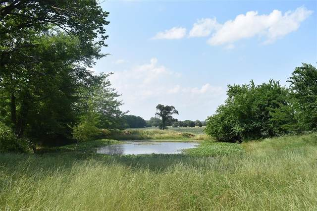 Lot 16 County Road 4612, Sulphur Springs, TX 75483 (MLS #14349299) :: All Cities USA Realty