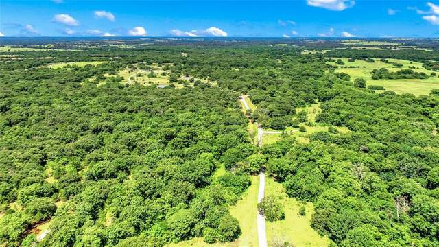 290 Green Oaks Drive, Sadler, TX 76264 (MLS #14350010) :: Robbins Real Estate Group