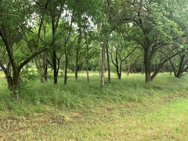 Lot 32 E Ridge Drive, Quinlan, TX 75474 (MLS #14350812) :: Robbins Real Estate Group