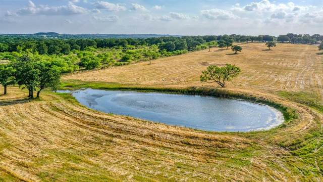 170 Dyer Road, Lipan, TX 76462 (MLS #14350941) :: Hargrove Realty Group
