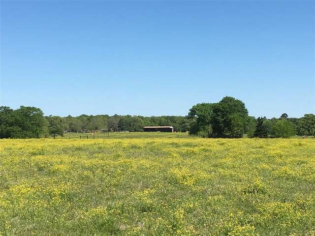 452 County Road 2133, Detroit, TX 75436 (MLS #14351011) :: North Texas Team | RE/MAX Lifestyle Property