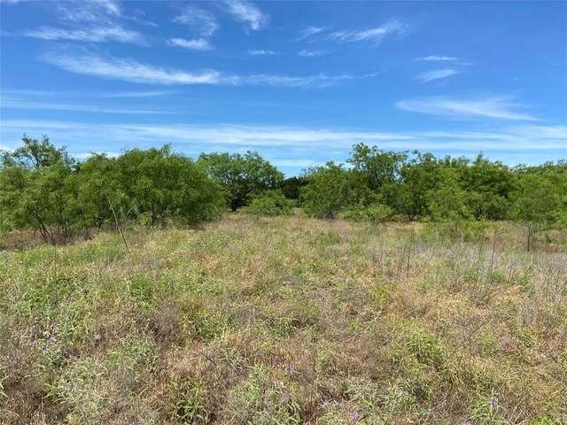 1260 Sparrow Court, Graford, TX 76449 (MLS #14351018) :: Frankie Arthur Real Estate
