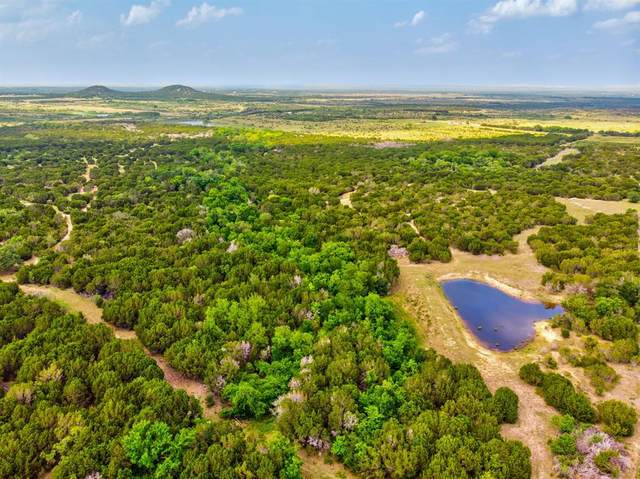 6000 Hwy 144 Highway, Glen Rose, TX 76043 (MLS #14351027) :: Potts Realty Group