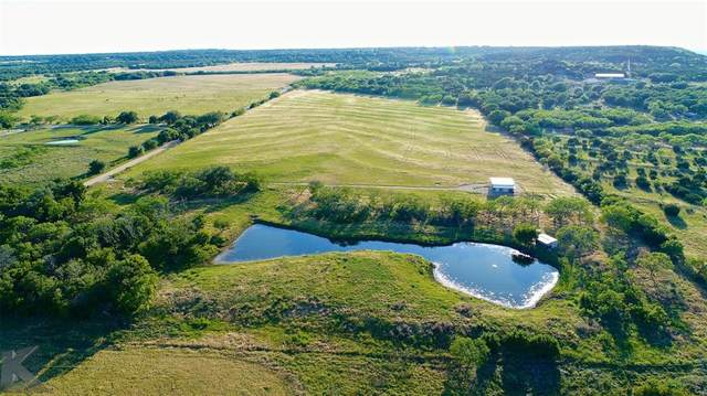 258 County Road 189, No City, TX 79567 (MLS #14351427) :: The Good Home Team