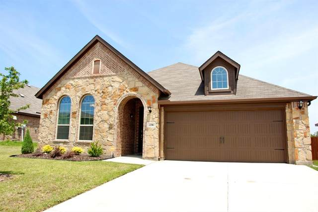 238 Ovaletta Drive, Justin, TX 76247 (MLS #14351504) :: The Rhodes Team