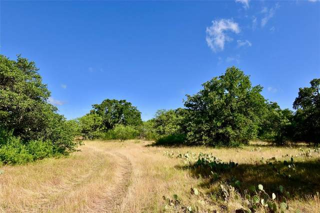 2500 L2 County Road 147, Brownwood, TX 76801 (MLS #14352262) :: The Hornburg Real Estate Group
