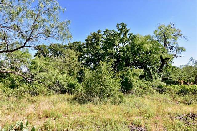 2500 L4 County Road 147, Brownwood, TX 76801 (MLS #14352304) :: The Hornburg Real Estate Group