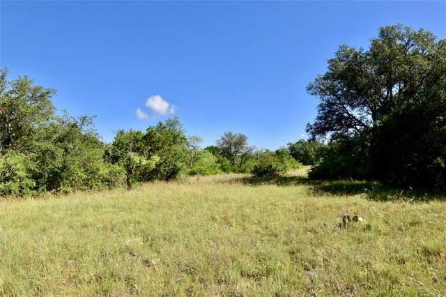 2500 L5 County Road 147, Brownwood, TX 76801 (MLS #14352318) :: The Hornburg Real Estate Group