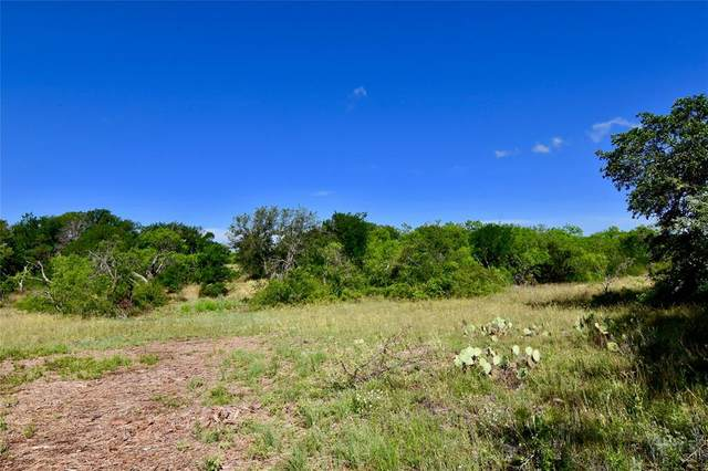 2500 L6 County Road 147, Brownwood, TX 76801 (MLS #14352337) :: The Hornburg Real Estate Group