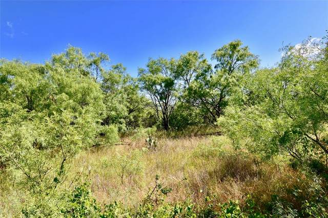 2500 L8 County Road 147, Brownwood, TX 76801 (MLS #14352362) :: The Hornburg Real Estate Group
