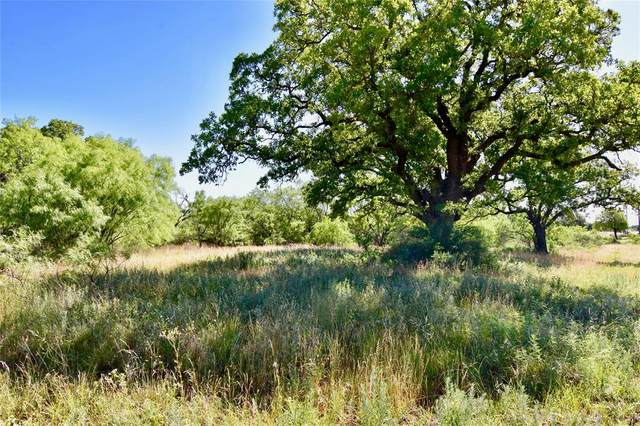 2500 L9 County Road 147, Brownwood, TX 76801 (MLS #14352389) :: The Hornburg Real Estate Group