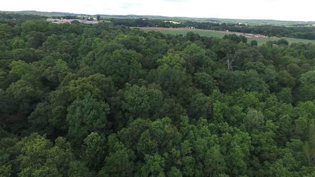 0000 County Road 4403, Larue, TX 75770 (MLS #14352464) :: Frankie Arthur Real Estate