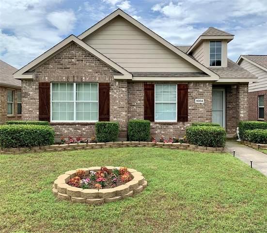 9004 Eastwood Avenue, Cross Roads, TX 76227 (MLS #14352723) :: RE/MAX Pinnacle Group REALTORS