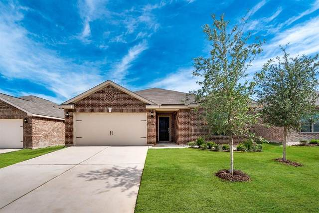 3017 Trinchera Street, Forney, TX 75126 (MLS #14352793) :: The Good Home Team