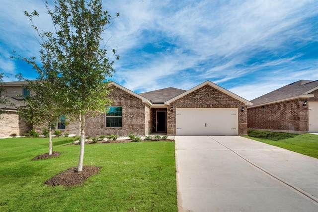 3021 Trinchera Street, Forney, TX 75126 (MLS #14352800) :: The Good Home Team
