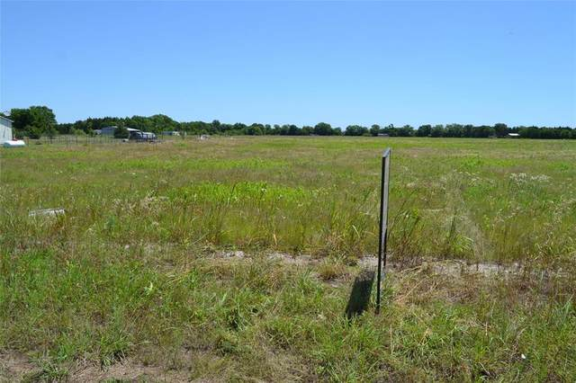 TBD Cr 1245, Savoy, TX 75479 (MLS #14352905) :: Baldree Home Team