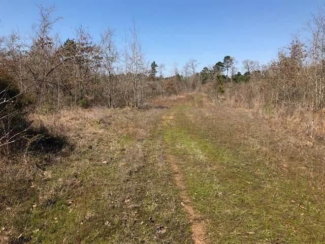 290 County Road 3424, Jefferson, TX 75657 (MLS #14353156) :: The Mauelshagen Group