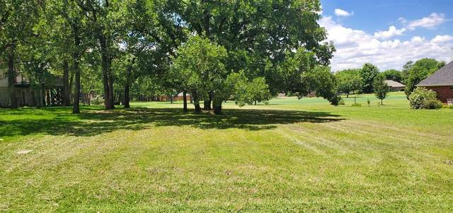 221 Cayuga Trail, Lake Kiowa, TX 76240 (MLS #14353289) :: The Paula Jones Team | RE/MAX of Abilene