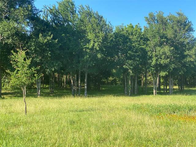 7270 Old Millsap Road, Millsap, TX 76066 (MLS #14353487) :: Frankie Arthur Real Estate
