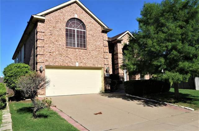 3536 Canyon Road, Grand Prairie, TX 75052 (MLS #14353863) :: Baldree Home Team